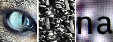 Las fotos en modo macro más flipantes hechas con un iPhone 13 Pro por los usuarios