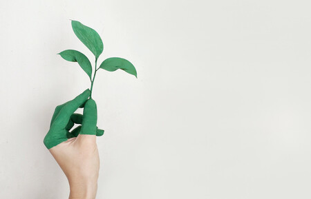 Crea tu propia área de bajas emisiones en tu buhardilla
