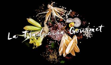 XXI Edición del Festival Gourmet Internacional: impulsando las artes culinarias