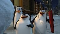 Los pingüinos de Madagascar tendrán serie de televisión