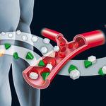Indice glucémico y carga glucémica, ¿qué son y para qué sirven?