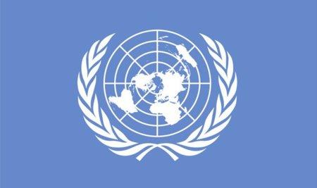 El acceso a Internet y la libre expresión online ya forman parte de los Derechos Humanos