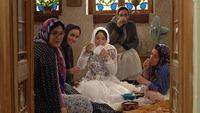 ¿Irán o no irán a los Oscar?