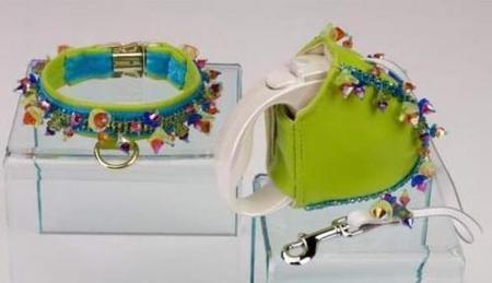 Chien Coature, conjuntos de collar y correa para perros con estilo
