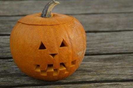Pumpkin 201116 1920