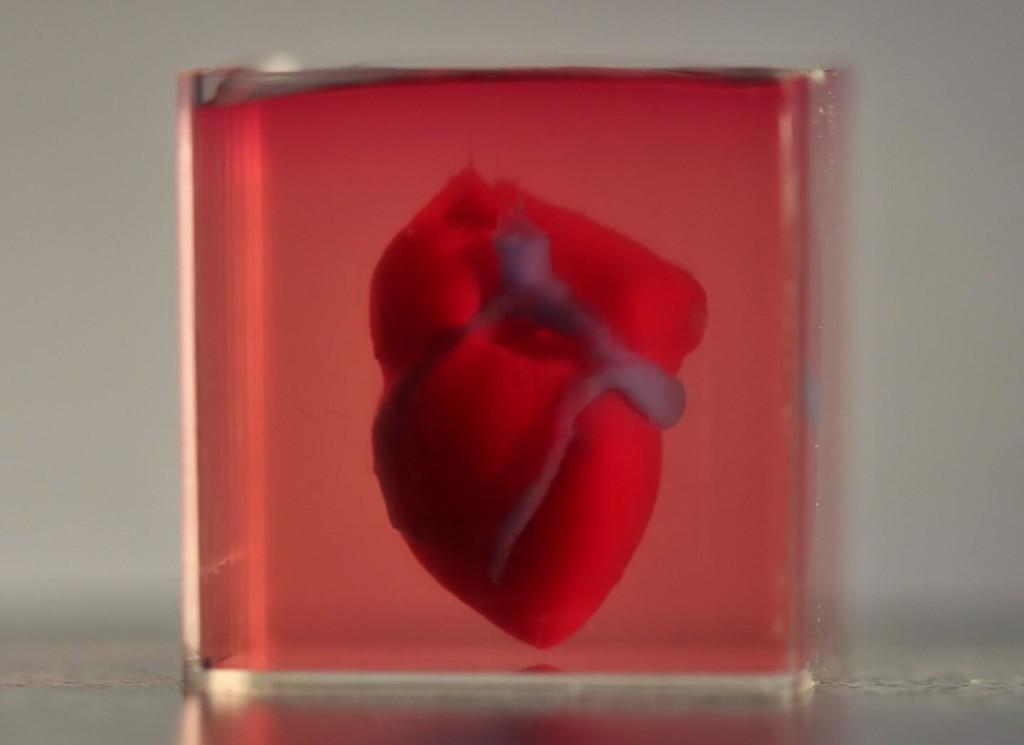 Este es el primer corazón impreso en 3D con células del propio paciente