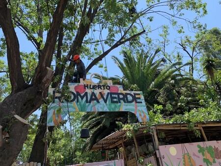 Que son los huertos urbanos y donde encontrarlos en la Ciudad de México