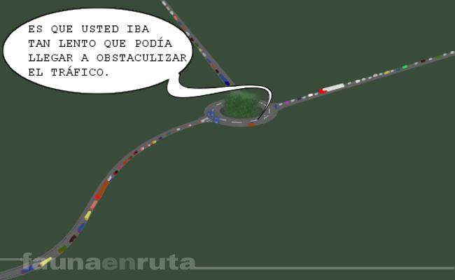 fauna en ruta: Mossos d'Esquadra en la rotonda