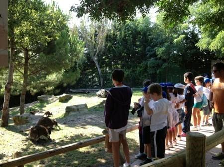 Los misterios del reino animal en los Campamentos de Semana Santa 2014 de Faunia