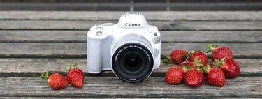 Canon EOS 200D, Nikon D5300, Olympus Pen E-PL9 y más cámaras, objetivos y accesorios en oferta: llega Cazando Gangas