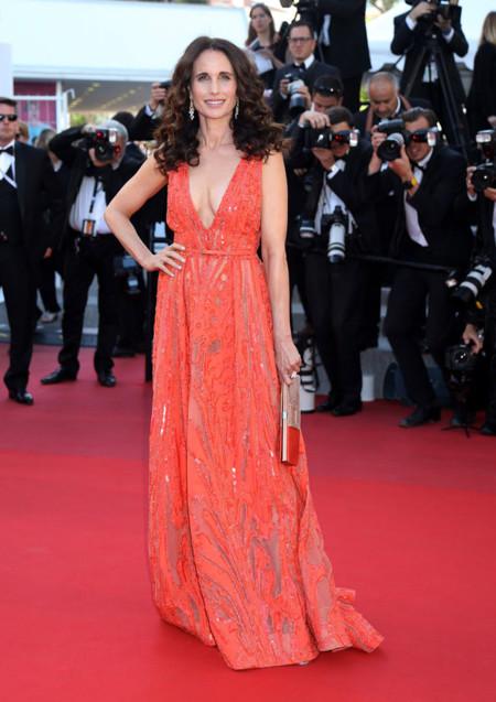 Andie Macdowell Cannes 2015