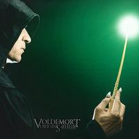 Ya podemos ver (gratis y con subtítulos en español) la película de los orígenes de Voldemort creada por fans