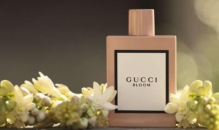 Gucci Bloom, el primer perfume de Alessandro Michele que no dejará indiferente a nadie