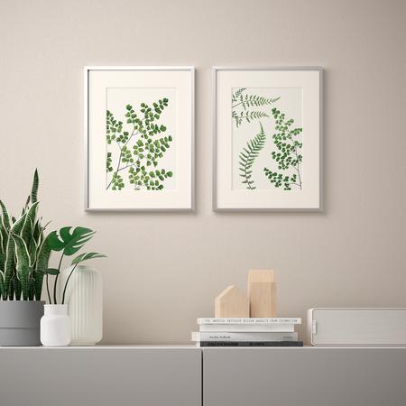 Ikea láminas helechos