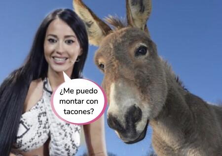 Aurah Ruiz enseña su día en familia: monta en burro con su hijo y termina estallando contra sus 'haters'