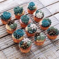 ¿Quién está detrás de las tartas de cactus comestibles que se están haciendo virales?