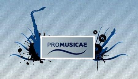 Guisasola (Promusicae) denuncia que la Ley Sinde funciona con mucha más tibieza que rigor