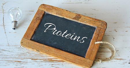 Porque la variedad de las fuentes de proteína importan
