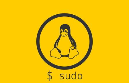 Una vulnerabilidad crítica en Sudo permite ganar acceso root en casi cualquier distro Linux