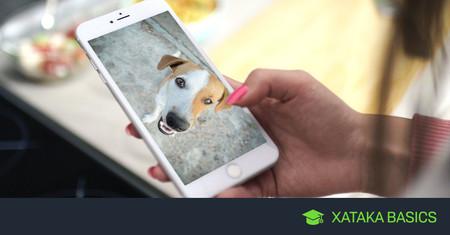 Cómo girar un vídeo en el móvil, en Android, iPhone y WhatsApp