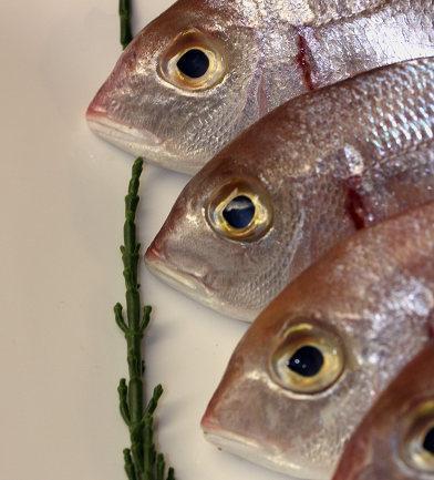 Trucos para comer más pescado