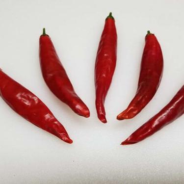 Chile pico de pájaro: el ingrediente que le da sentido a la cocina huasteca