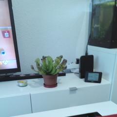 Foto 9 de 9 de la galería fotos-hechas-con-el-umi-z en Xataka Android