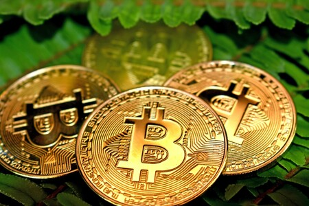 China Sinks It But Paypal Rescues It The Bitcoin Reached 50,000 Dollars With The Announcement That Paypal Will Allow Its Purchase In Uk