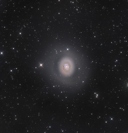 M94 Deep Space Halo Nicolas Outters