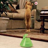 Pistola de papel higiénico y bola virtual para tu gato
