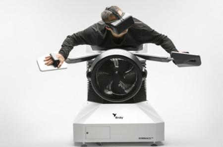 Podemos volar como pájaro con la realidad virtual de Birdly VR
