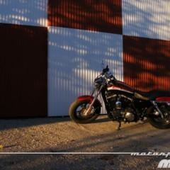 Foto 62 de 65 de la galería harley-davidson-xr-1200ca-custom-limited en Motorpasion Moto