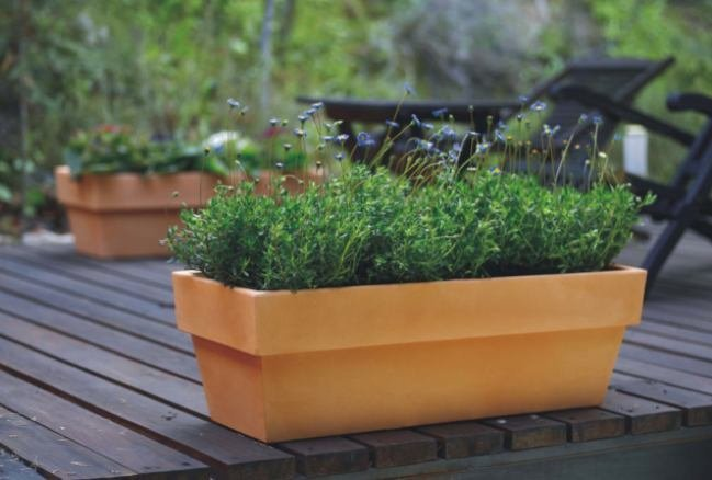 Terrazas decorando con plantas - Plantas terraza ...