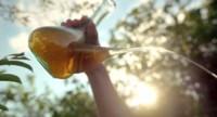 Tres canciones de anuncios de cerveza para este verano: tu rubia no es nadie sin una canción