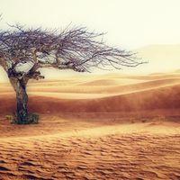 800.000 años de cambio climático en solo 3 minutos