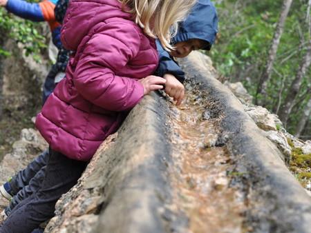 Compañeros de Ruta: once planes para viajar con niños