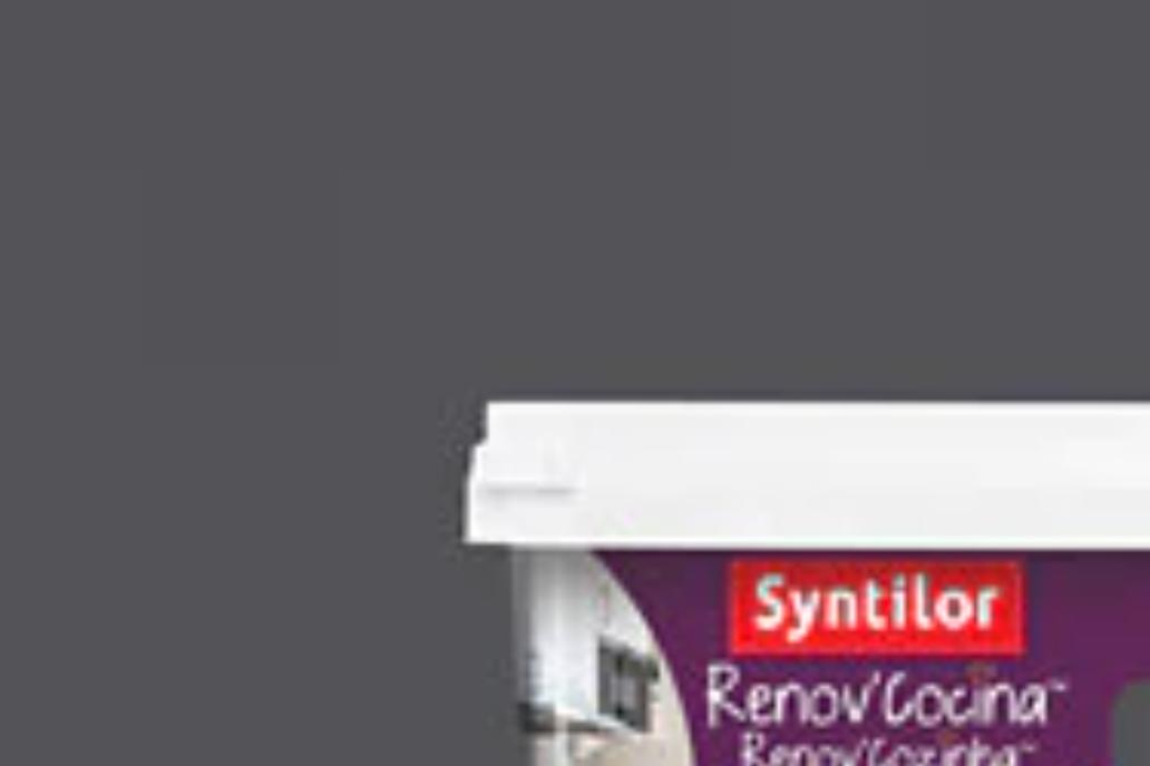 OFERTA BLACK FRIDAY Pintura multisuperficie Renov Cuisiune Flash gris 0,5L
