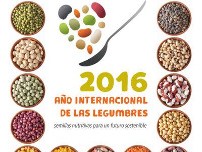 Este 2016 es el Año Internacional de las Legumbres, ¿te apuntas a celebrarlo?