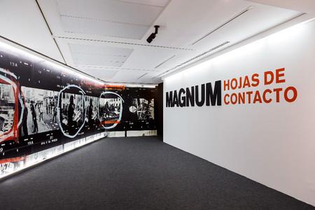 Magnum Iv