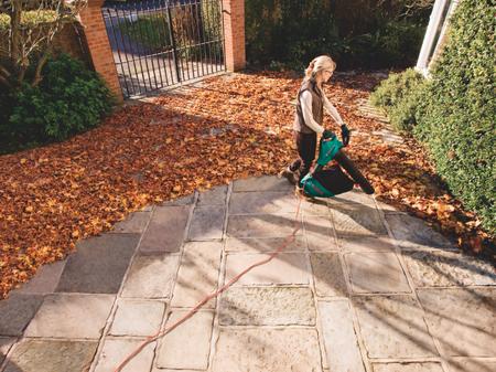Limpiar el jardín en otoño parece misión imposible, pero con un aspirador de hojas se lleva mejor