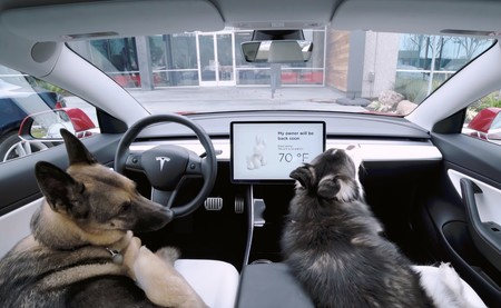Tesla incorpora ahora un antirrobo con cámaras y alarmas mientras cuida de tu perro si lo dejas en el coche