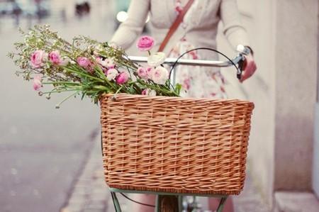 picnic cesta