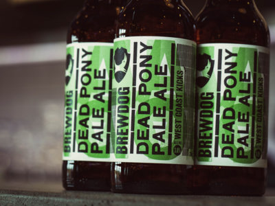 Las cervezas más frescas y apetitosas para esta verano
