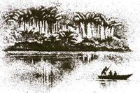 Bellas ilustraciones elaboradas con hojas secas de té