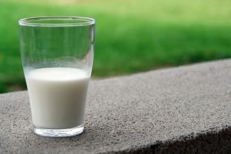 Breve historia de la leche: un alimento en el centro de los debates alimentarios, morales y económicos