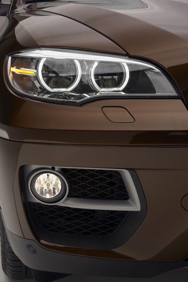 Foto de BMW X6 (2012) (7/11)