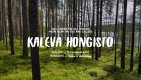 Descubre tu nombre en finlandés... y de paso el país