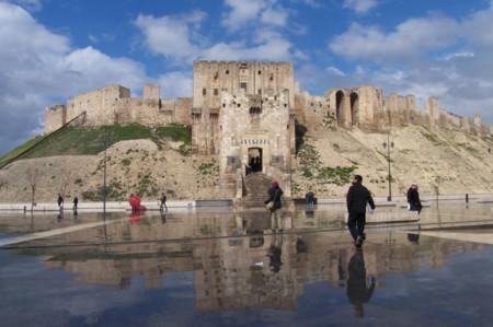 Aleppoi