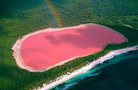 Cuando crees que lo conocías todo, aparece un lago de color rosa
