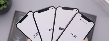 Más filtraciones de los paneles frontales del iPhone 13 muestran los cambios en el notch
